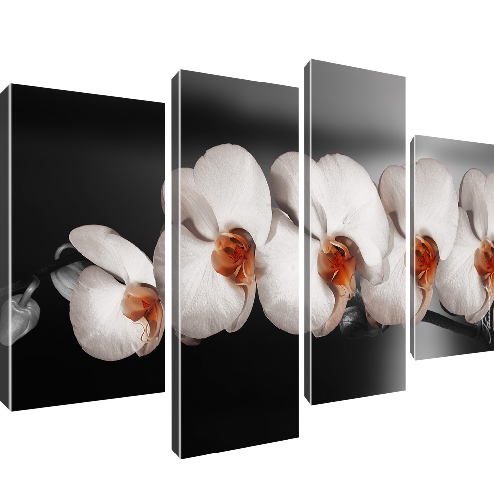 blumen wandbilder orchidee bilder auf leinwand farbe. Black Bedroom Furniture Sets. Home Design Ideas