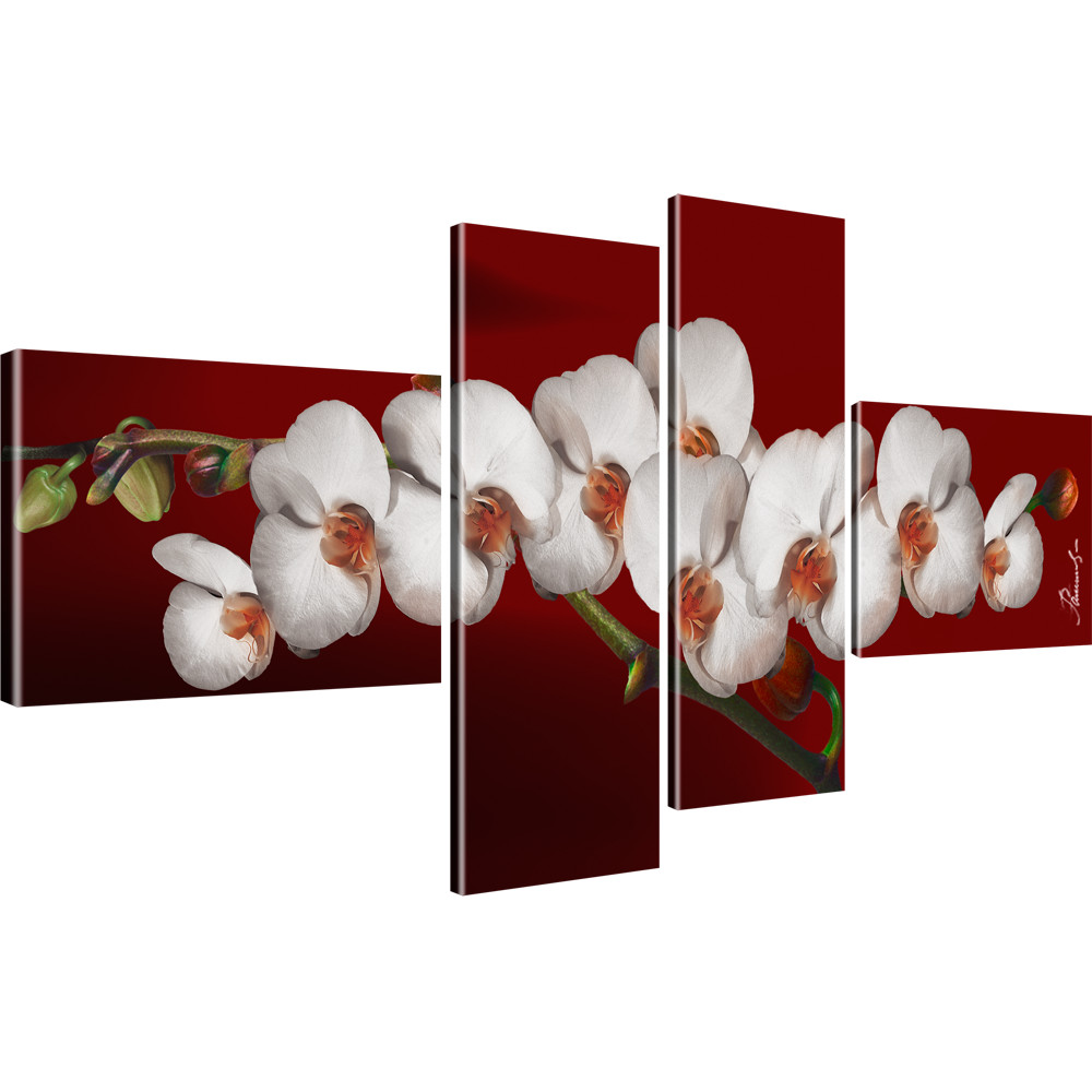 blumen wandbilder orchidee bilder auf leinwand farbe gr e w hlbar ebay. Black Bedroom Furniture Sets. Home Design Ideas